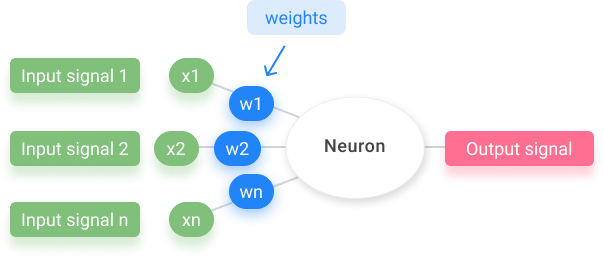 Weights they let the artificial neural networks learn