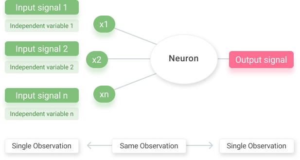 Neurons of artificial neural networks
