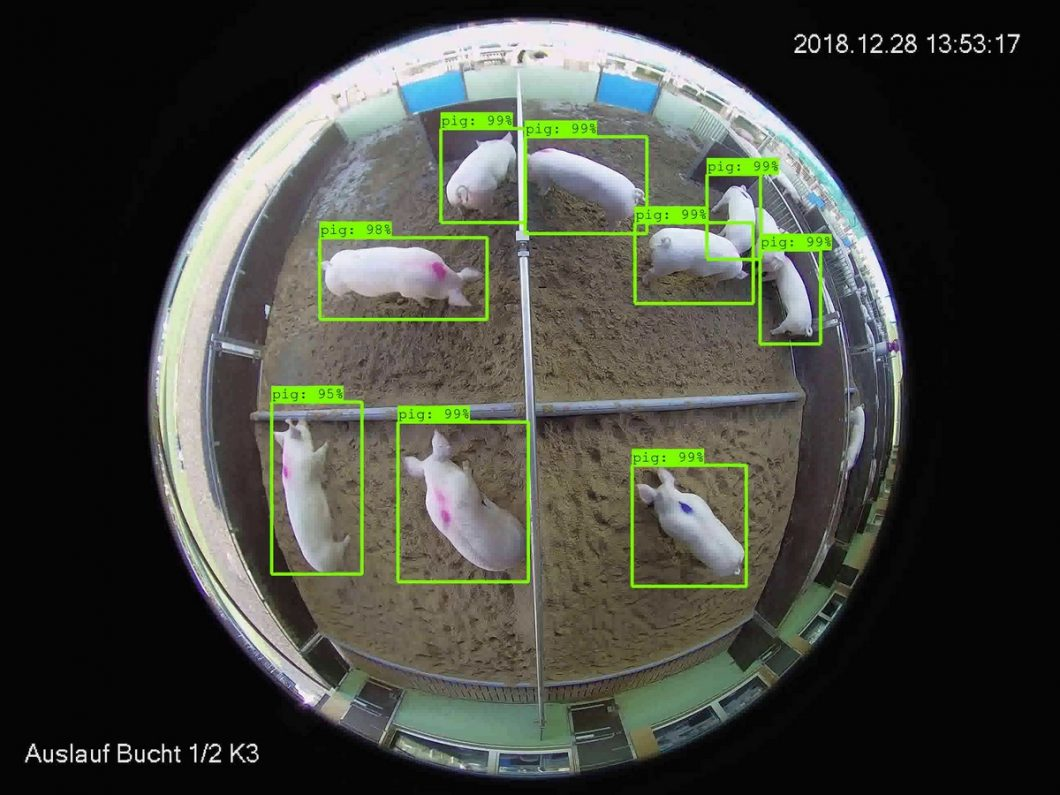 Object Detection in Farming