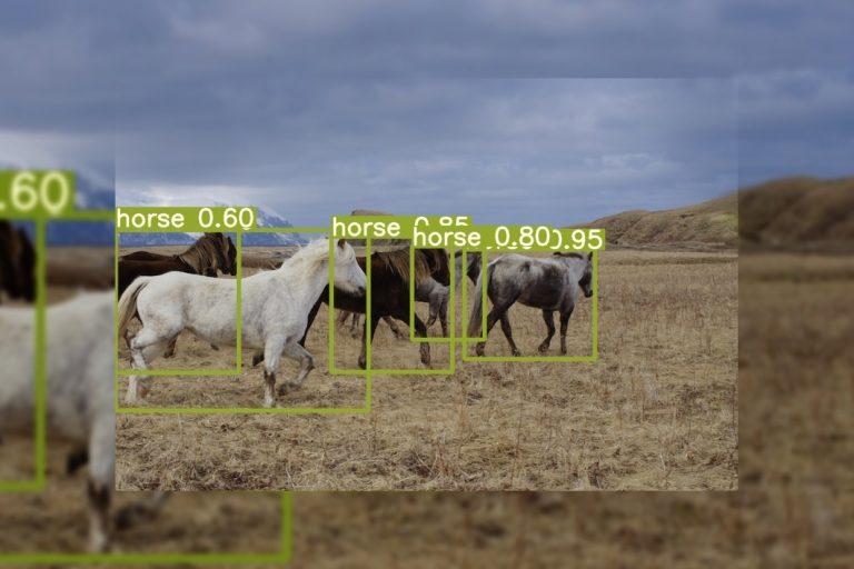 YOLOR Object detection algorithm for multi-task learning
