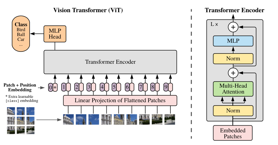 Vision Transformer ViT Architecture